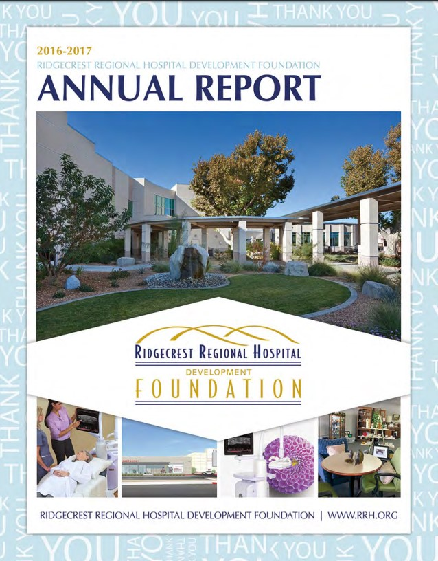screenshot of annual report cover page